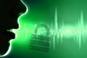 Voice Recognition Security ID
